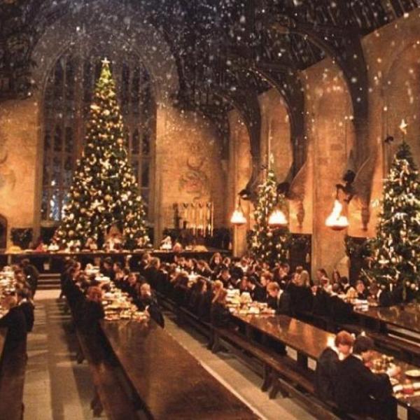 Vánoce Harryho Pottera