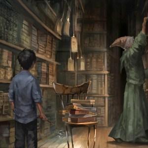 Hůlka si vybírá čaroděje – ale co to znamená?