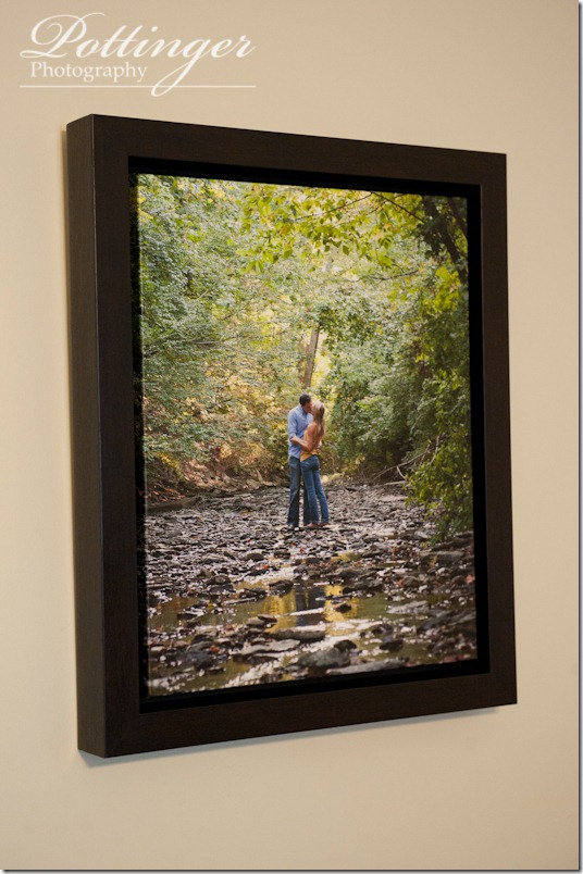 Canvas Wrap with a Floating Frame  Pottinger Photography