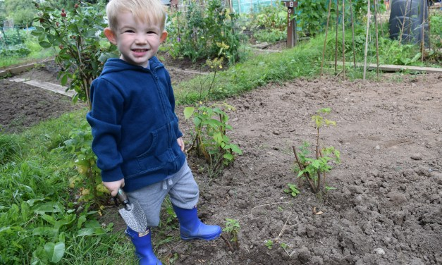 Family Friendly Community Gardening with Digging Deeside