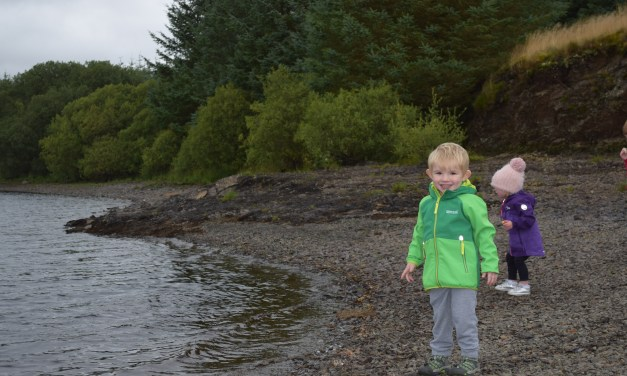 Outdoor Clothing For Kids – Regatta Arowana Softshell Jacket Review
