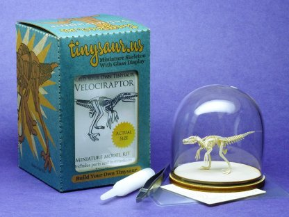 All-in-one box with laser-cut bones, glass display dome, glue, magnifier, and tweezers