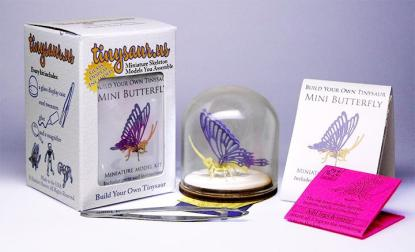 Butterfly All-in-one miniature skeleton model kit with laser cut bones, instructions, tweezers, glue, and a magnifier by Tinysaur.us