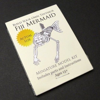 Fiji Mermaid miniature skeleton model package by Tinysaur.us