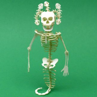 Assembled Medusa miniature skeleton model kit by Tinysaur.us