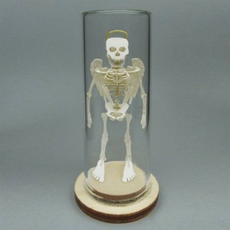 Angel All-in-one miniature skeleton model kit in glass display dome