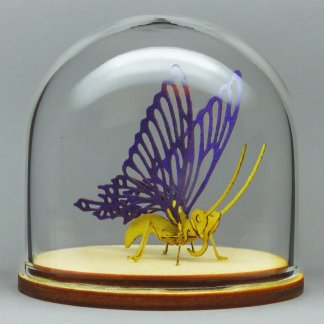 Butterfly All-in-one miniature skeleton model kit in glass display dome by Tinysaur.us