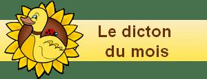 bannière widgets dicton du mois de la basse-cour