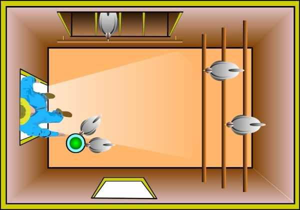 plan d'aménagement intérieur d'un poulailler