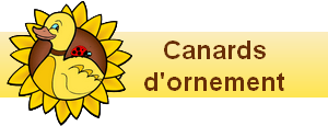 bannière canards d'ornement 122