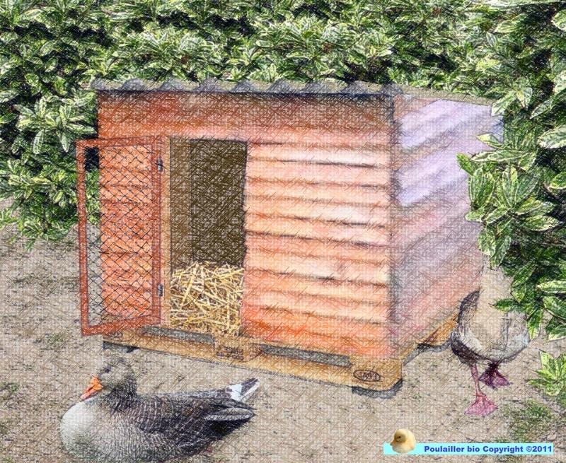 cabane pour les oies fait avec des palettes