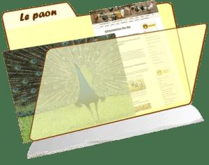 les fiches de la basses-cour bio - le paon