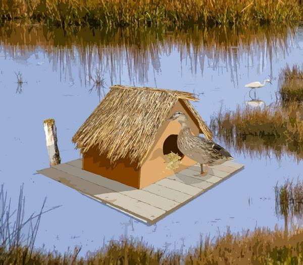 abri - nichoir flottant pour canard