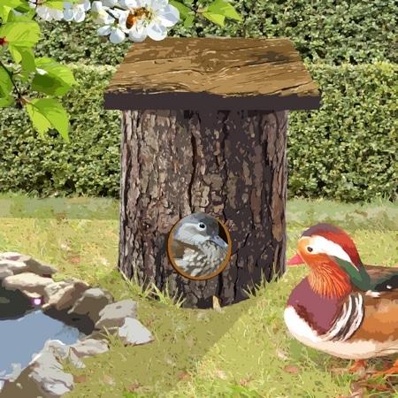 nichoir tronc d'arbre pour canard mandarin