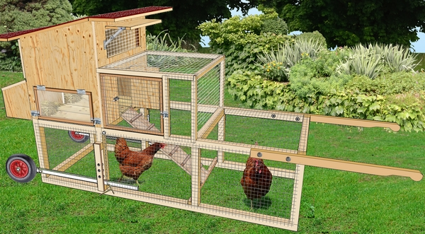tracteur à poules dans un jardin