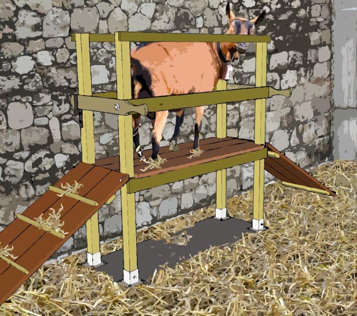 construire un quai de traite pour ch vres poulailler bio. Black Bedroom Furniture Sets. Home Design Ideas