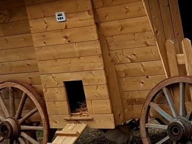 Christophe - trappe du poulailler roulotte avec portier automatique