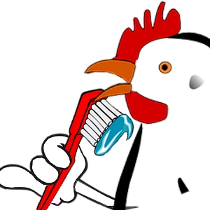 Pourtant, c'est vrai, les poules ont des dents très petites, souvenir d'une époque lointaine où les poules ressemblaient à tout sauf à des poules, le temps des dinosaures.