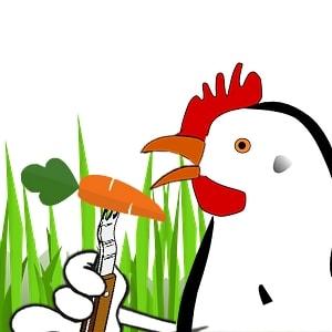 Les poules n'ont aucunement besoin d'alimentation carnée pour se nourrir. Les poules sont naturellement « véganes ».