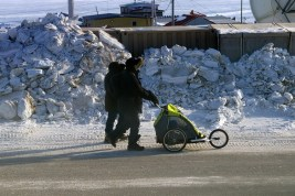 The traditional stroller - need the big wheels to work well on snow and ice !