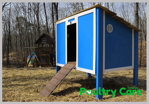 Build-a-Chicken-Coop-by-Home-Depot