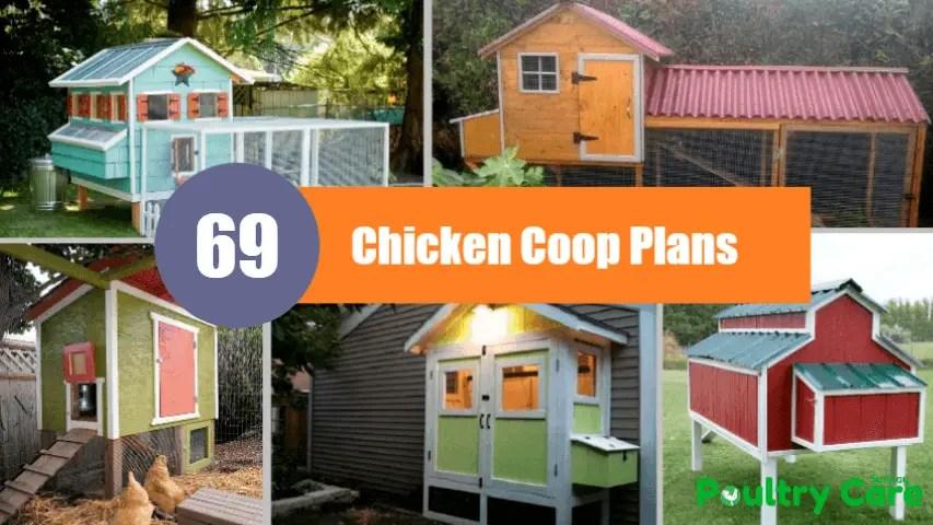 Chicken-Coop-Plan