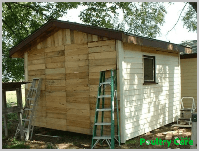Free-Pallet-Chicken-Coop-by-Judy