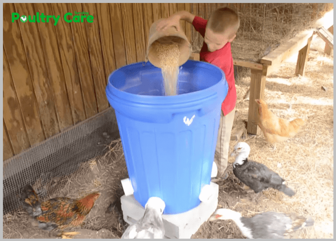 10 Diy Chicken Feeder And Waterer Plans And Ideas Poultry Care Sunday
