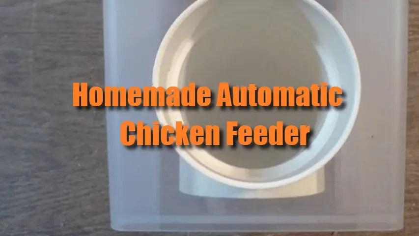 Automatic-Chicken-Feeder