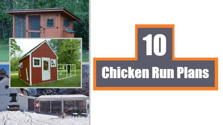 Chicken-Run-Plans
