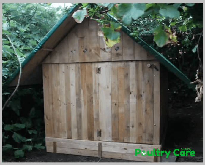 The-Safe-and-Secure-Chicken-Coop