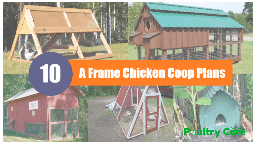 A_Frame_Chicken_Coop_Plans