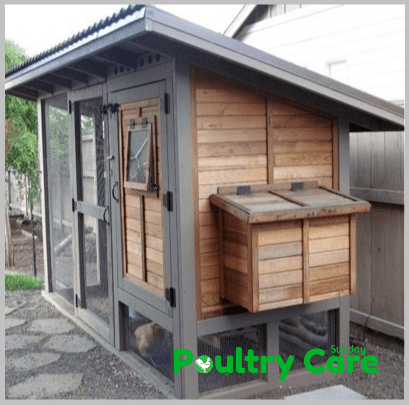 Tongue and Groove Cedar Coop