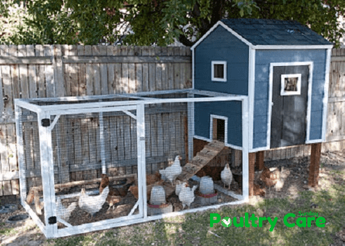 Housewives of Riverton Chicken Coop