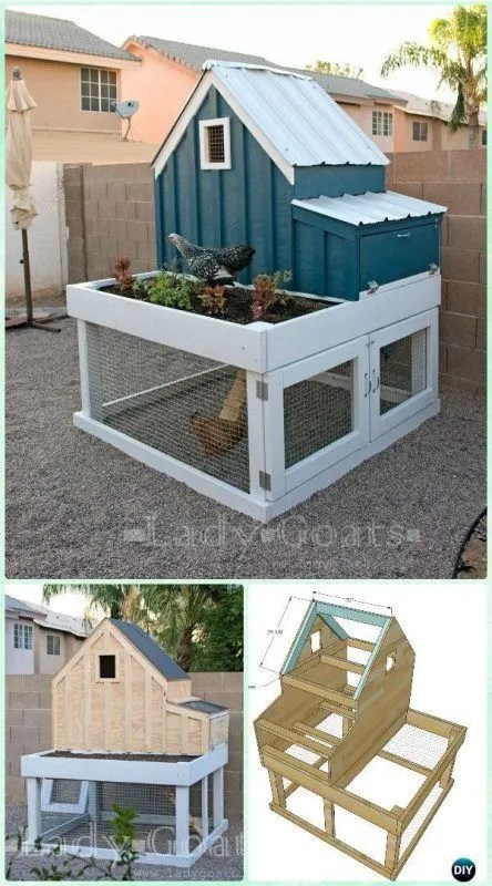 Saltbox Chicken Coop
