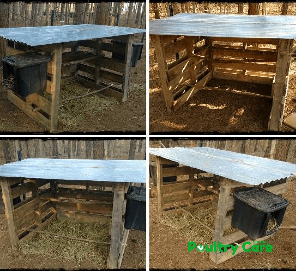 The Free and Easy Pallet Coop