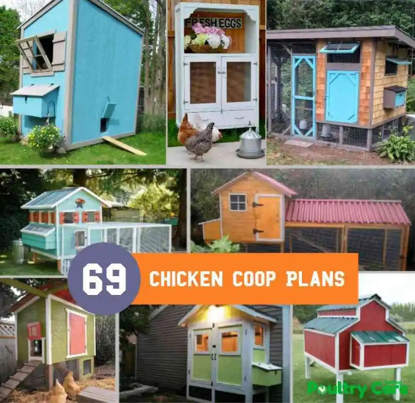 69 Diy Chicken Coop Plans And Ideas That Are Easy To Build