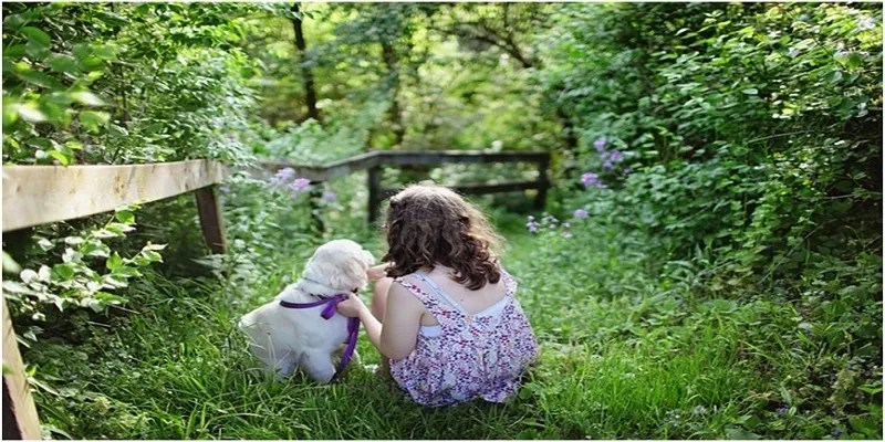 Are-Children-With-Pets-Do-Better-in-School