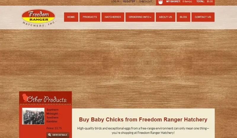 Freedom Ranger Hatchery