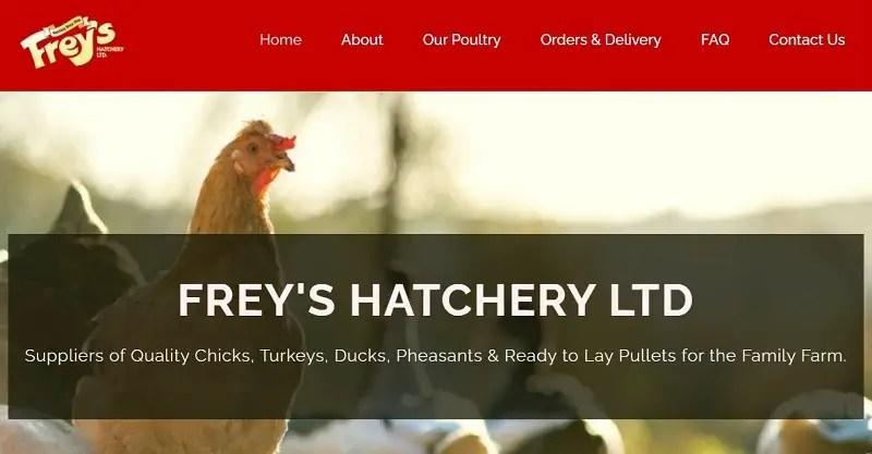 Freys Hatchery