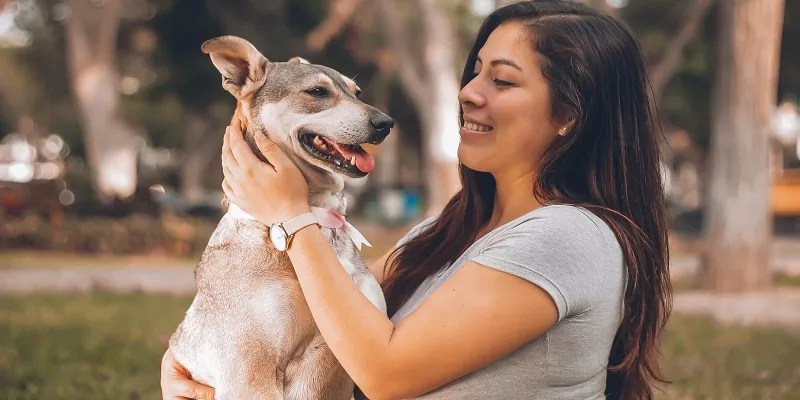 How You Can Find an Anxiety Support Pet for Yourself
