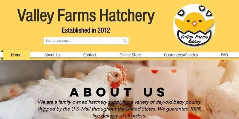 Valley Farms Hatchery