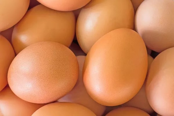 What Is A Group Of Eggs Called