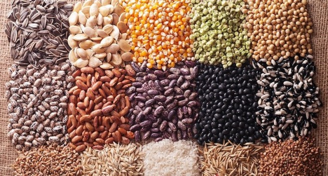 mixed seeds and grains for poultry