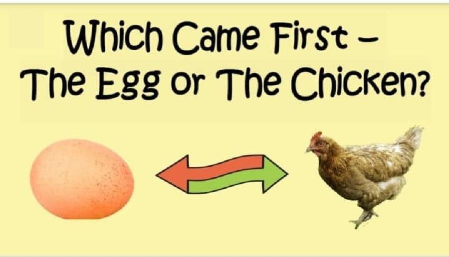 Which Came First The Egg or The Chicken