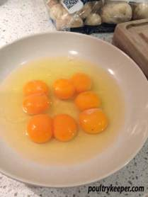 4 Double Yolk Eggs
