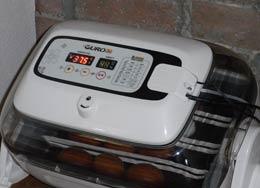 RCOM Suro Incubator
