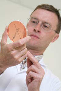 Poultry Vet with Bacteriology Plate