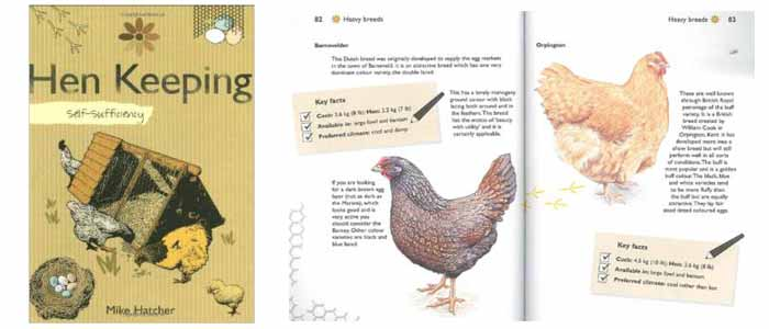 Self Sufficiency Hen Keeping Book Review