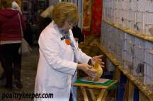 Clare Beebe Poultry Judge